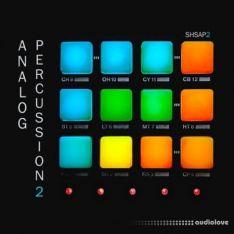 ShamanStems Analog Percussion 2