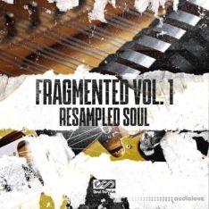 Soul Surplus Fragmented Vol.1 Resampled Soul