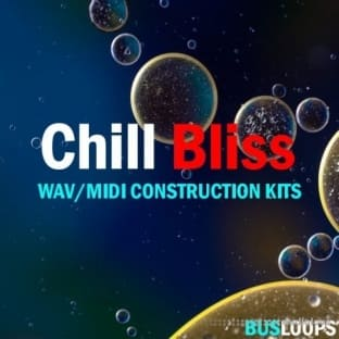 Busloops Chill Bliss Vol 1