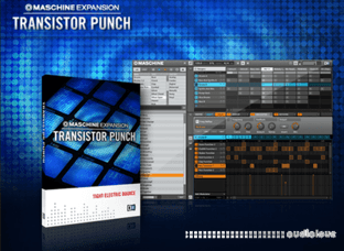 Native Instruments Maschine Expansion Transistor Punch