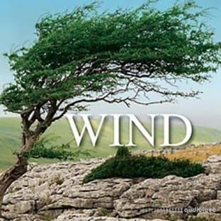 Sound Ideas Wind