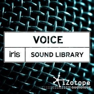 iZotope Iris Voice Sound Library