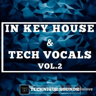 Technique Sounds In Key House and Tech Vocals Vol.2