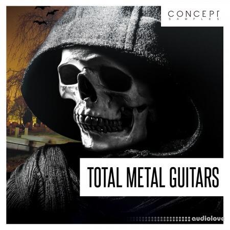Concept Samples Total Metal Guitars