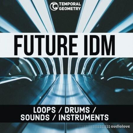 Temporal Geometry Future IDM