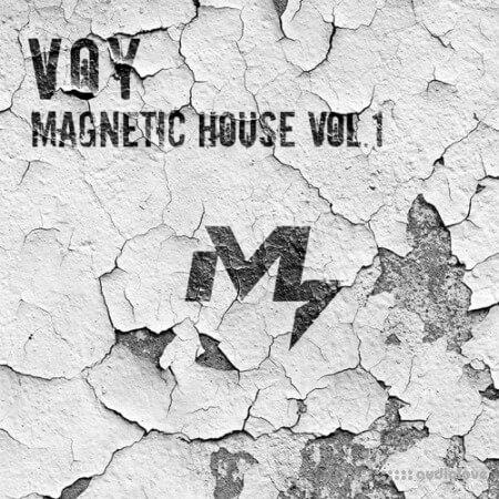 Sample Market VOY Magnetic House Vol.1