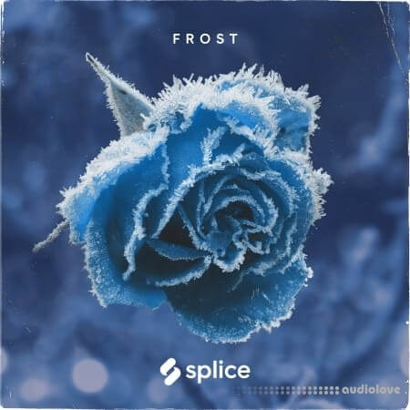 Splice Originals Frost February RnB