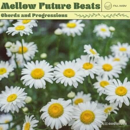 nu.wav Mellow Future Beats Chords and Progressions