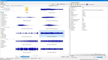 3delite Audio File Browser