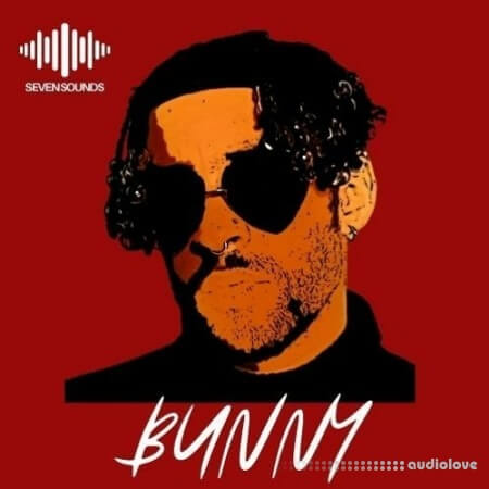 Seven Sounds Bunny