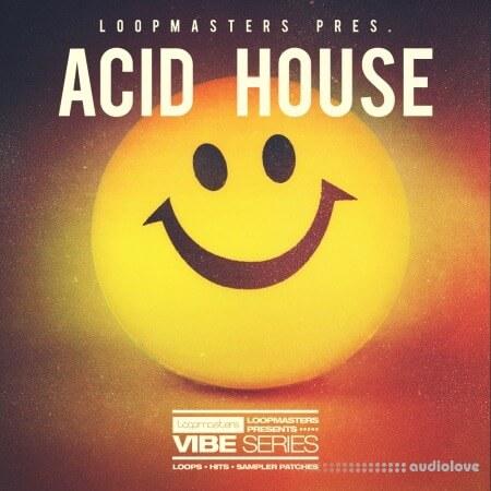 Loopmasters Vibes 7 Acid House