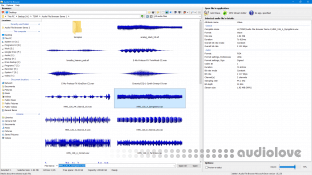 3delite Audio File Browser v1.0.8.46