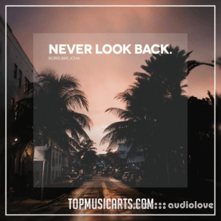 Top Music Arts Boris Brejcha Never Look Back Ableton Remake (Progressive House Template)