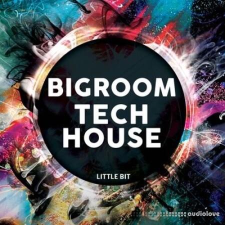 Little Bit Bigroom Tech House