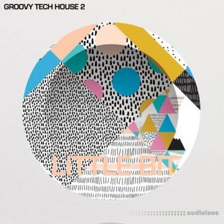 Little Bit Groovy Tech House 2