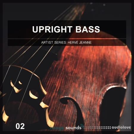 Image Sounds Upright Bass 2