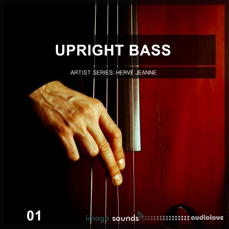 Image Sounds Upright Bass 1