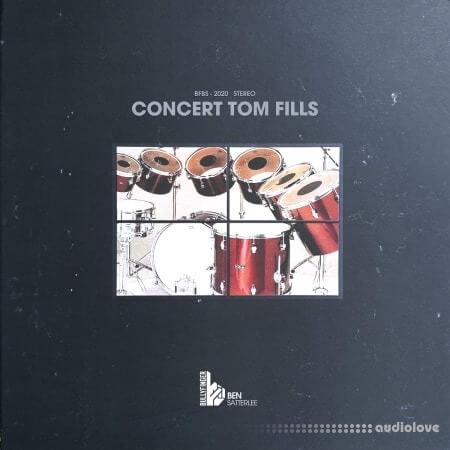 Bullyfinger Satterlee Concert Tom Fills