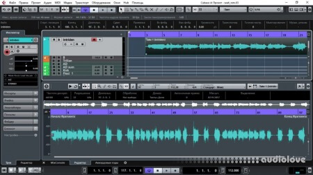 Steinberg Cubase LE AI Elements v8.0.20 Build 468 WiN