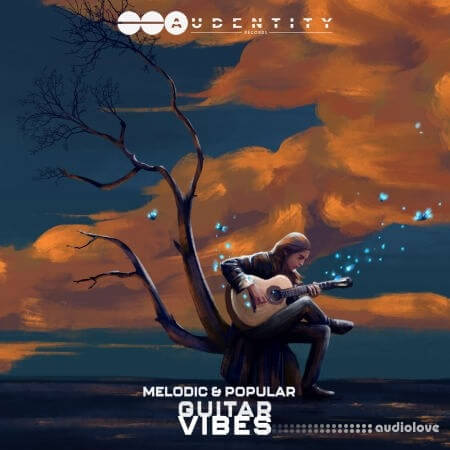 Audentity Records Melodic and Popular Guitar Vibes WAV