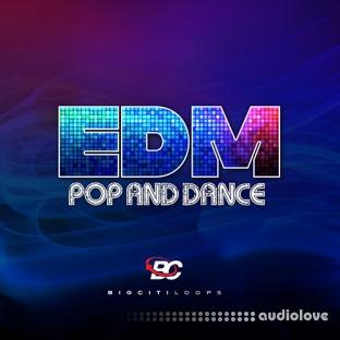 Big Citi Loops EDM Pop Dance