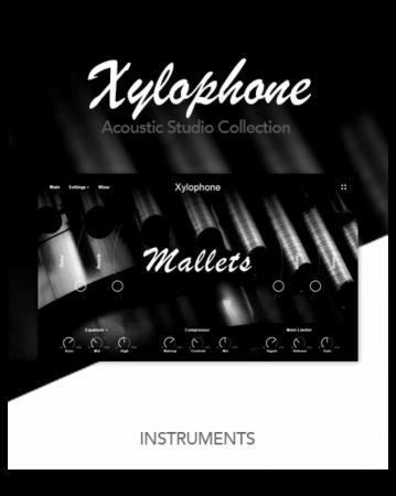 Muze Xylophone