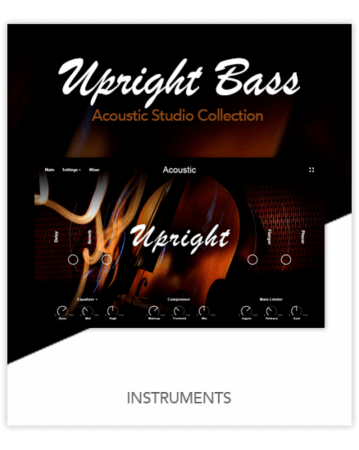 Muze Upright Bass