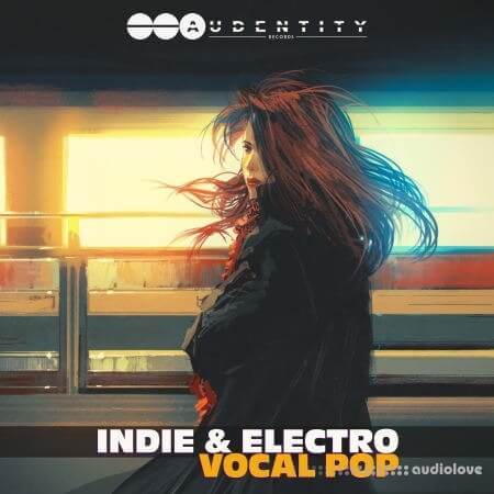 Audentity Records Indie Electro and Vocal Pop WAV