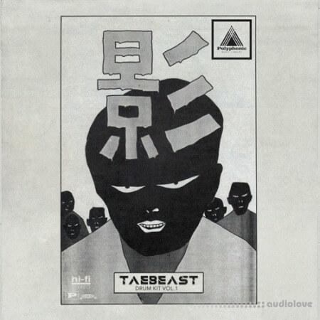 Polyphonic Music Library TaeBeast Drum Kit Vol.1 AiFF