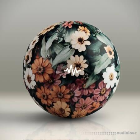 WavSupply Noah Mejia Flowers Vol.3 One Shot Kit WAV MiDi