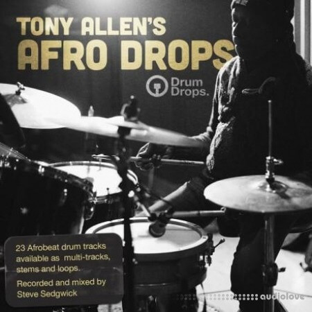 DrumDrops Tony Allens Afro Drops: Multitrack Sessions