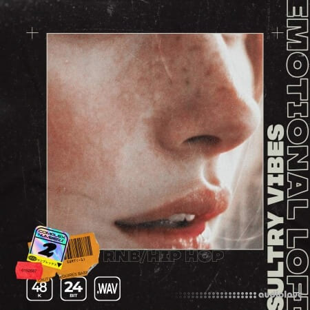 Epic Stock Media Emotional Lo-Fi Sultry Vibes
