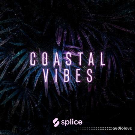 Splice Originals Coastal Vibes Reggaeton