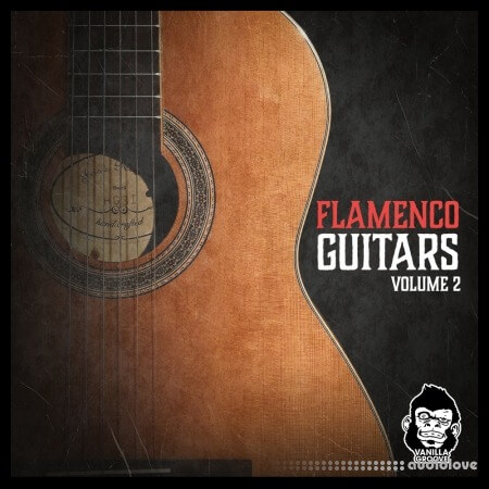 Vanilla Groove Studios Flamenco Guitars Vol.2