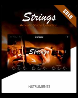 Muze Strings Solo