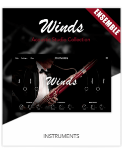 Muze Woodwinds Ensemble