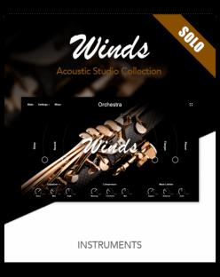 Muze Woodwinds Solo