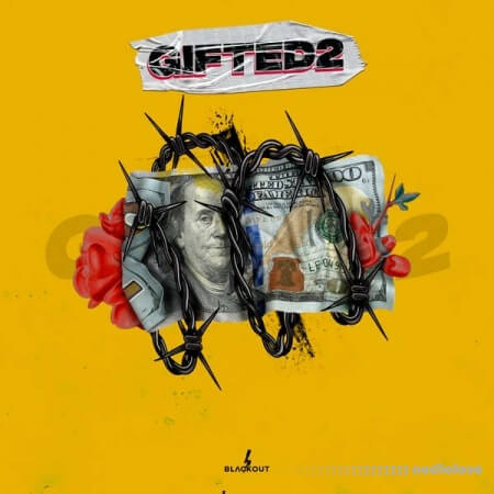 Fxrbes Beats Gifted Vol.2 WAV