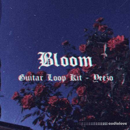 Yeezo Bloom Guitar (Loop Kit)