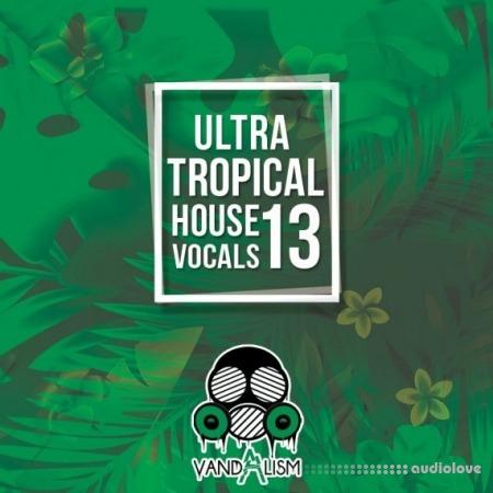 Vandalism Ultra Tropical House Vocals 13