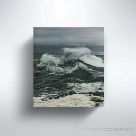 Pedro Paes Waves (Sample Pack)