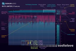 Signum Audio Bute Limiter 2 (Stereo/Surround)