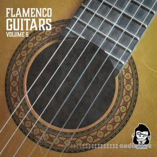Vanilla Groove Studios Flamenco Guitars Vol.6