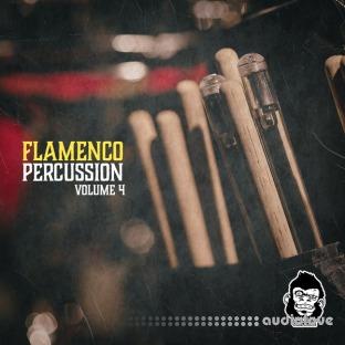 Vanilla Groove Studios Flamenco Percussion Vol.4