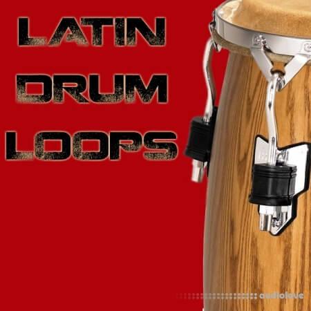Bunker 8 Digital Labs Latin Drum Loops WAV ACiD AiFF REX