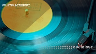 PUNKADEMIC The Musician's Guide to Distribution and Digital Distribution
