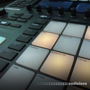 Producertech Track Production in Maschine MK3