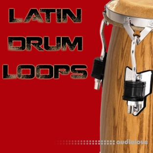 Bunker 8 Digital Labs Latin Drum Loops