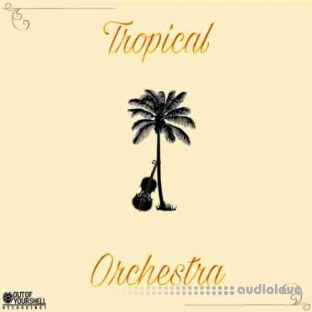 Out Of Your Shell Sounds Tropical Orchestra