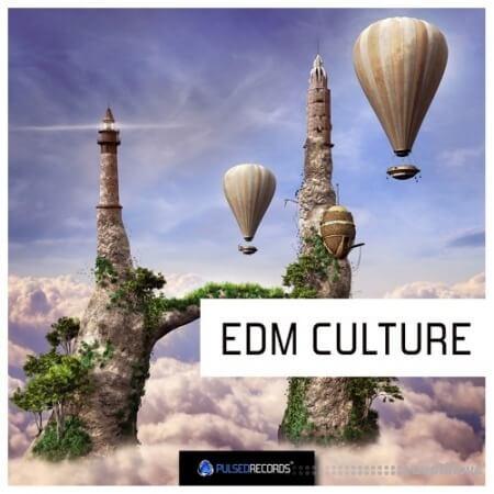 Pulsed Records EDM Culture